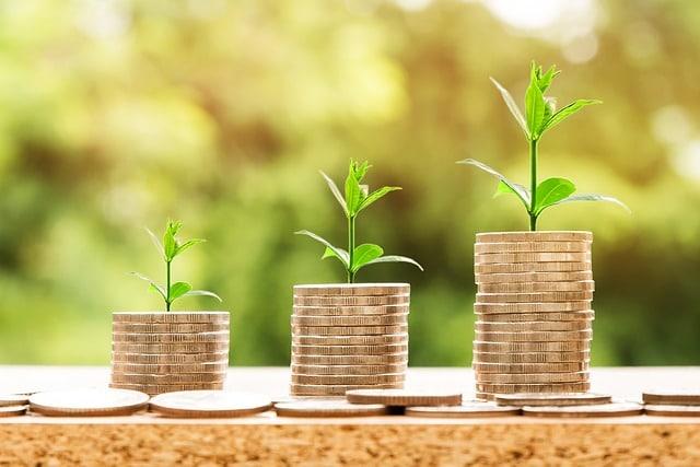5 dicas para aumentar a margem de lucro do seu negócio